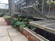RHS Chelsea 2015. Our new cold frames were launched at this years Chelsea.