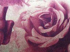 York - lavish rose
