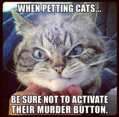 When Petting Cats Be Sure Not To activate Their Murder Button.