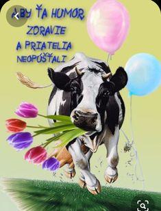 Humor, Birthday, Poster, Blog, Pictures, Animals, Goals, Album, Fotografia