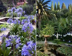 The mixed beauty of Villa della Pergola's Gardens, in Alassio | Italian Ways