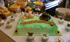 John Deere Theme Baby Shower, I purchased a cake frosted white and sprayed the green on.  I made rice crispy treats and cut into hay bales and placed a rooster on top, I then crushed cookied and made a road, flowers for accent.  Purchased at toy store the John Deere Diesel Truck and Tractor.  Then I made two kinds of cupcakes and found the cutest picket fence cupcake wraps at Michaels and sprinkled green on frosting and placed a farm animal on each one.