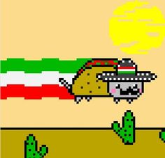 Mexican poptart cat