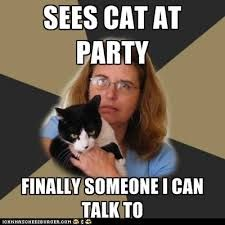 Image result for crazy cat lady