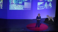 Healing spaces - the science of place and well-being: Esther Sternberg at TEDxTucson 2013