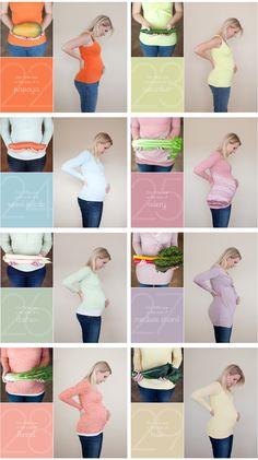 Pregnancy Week by Week!