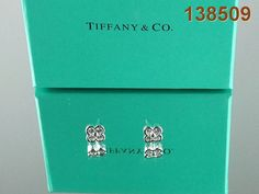 Tiffany & Co Earrings- Outlet 138509 Tiffany jewelry