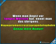 Lustiges Wissen #Hippopotomonstrosesquippedaliophobie #lustigesWissen #lustig #Humor #lachen Good Jokes, Funny Jokes, Hilarious, Really Funny, Funny Cute, Funny Dialogues, Funny Pins, Tumblr Funny, Fun Facts