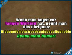 Lustiges Wissen #Hippopotomonstrosesquippedaliophobie #lustigesWissen #lustig #Humor #lachen