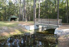 Aiken State Park was built by an African-American detachment of the Civilian Conservation Corps.  Their work can still be seen at the park.  #Aiken