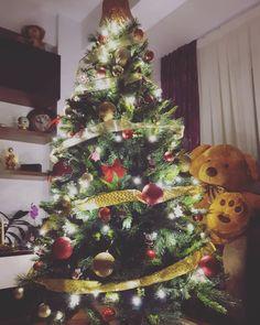Prepared for Christmas :) Two weeks till Santa comes! Santa, Christmas Tree, Holiday Decor, Life, Home Decor, Teal Christmas Tree, Decoration Home, Room Decor, Xmas Trees