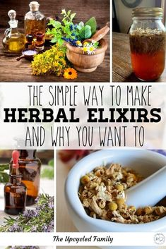 What is an herbal elixir and how do you make one? Everything you need to know to start making your own basic and beyond herbal elixirs. #herbal #remedies #medicine #forbeginners #apothecary #elixirs #medicinerecipes #benefits #healing Natural Health Remedies, Natural Cures, Natural Skin, Cough Remedies, Herbal Remedies, Herbs For Health, Health And Wellness, Health Tips, Real Food Recipes