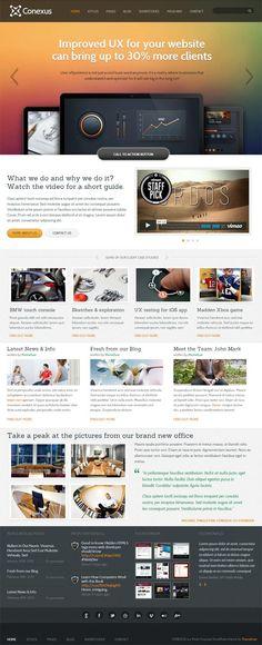 Conexus Business WordPress Theme Review   ThemeFuse