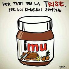 #imu #governoletta #trise #2013