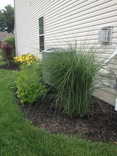 MY LIFE BY DESIGN: landscaping update: The side yard....