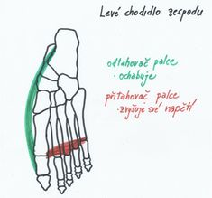 Jak uzdravit vbočený palec, klenby a problémy chodidel [Barefoot speciál 3]