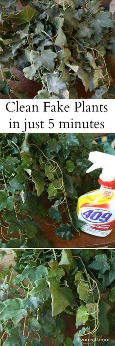 Easily clean your fake plants in 5 minutes