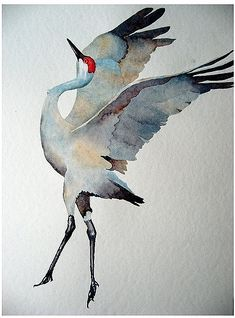 watercolor: sandhill crane not a tattoo but asking to become one. Watercolor Bird, Watercolor Animals, Watercolor Paintings, Watercolors, Watercolor Japan, Tattoo Watercolor, Watercolor Portraits, Watercolor Landscape, Abstract Paintings