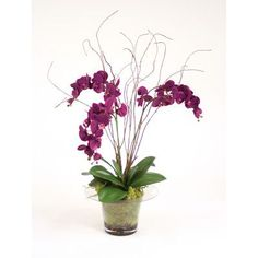 Distinctive Designs Silk Violet Orchid with Kiwi VInes, Birch Twigs and Preserved Orchid Bark in Glass Planter