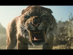 Animal extinction documentary from national geographic.