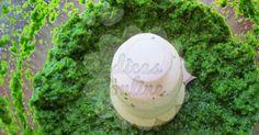 Fantástico! Tempero de alho e salsinha: um toque precioso na cozinha! - # #alho #molho #salsa #salsinha #tempero