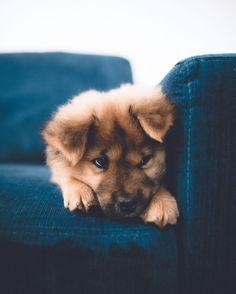 Sitting, waiting, wishing