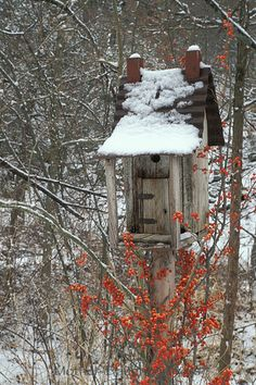 rustic birdhouse with bittersweet