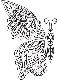 borboleta richelieu