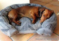 Scuola di Cucito e Riciclo: cuccia per cani gatti fatta con vecchi maglioni
