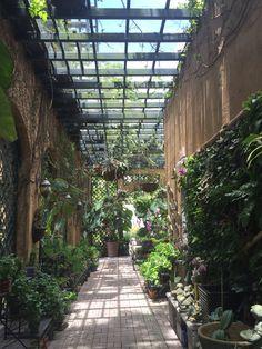 More entryway