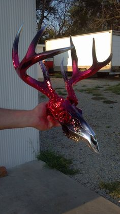Red Black Candy Chrome Deer Skull by Alternative Chrome Creations http://www.facebook.com/AlternativeChromeCreations