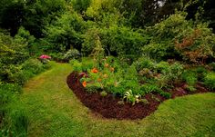 Rechtzeitig fertig geworden, ... zum heutigen Feiertag, bin ich mit der Beetergänzung im hinteren Gartenteil. Jetzt gibt es mehr Insektenglück und für mich weniger Rasenmähen. :-)