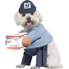 This US Mail Carrier Dog Costume comes with foam arms that hold up a USPS box, giving the illusion your dog is walking on two legs. This outfit stays closed with a hook-and-loop closure. Cute Halloween Costumes, Pet Costumes, Halloween Kostüm, Cool Costumes, Costume Ideas, Funny Costumes, Animal Costumes, Halloween Makeup, Costume Chien