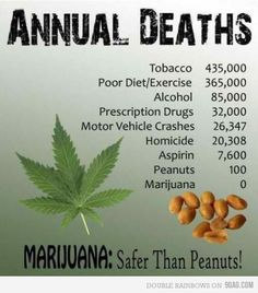 safer than peanuts