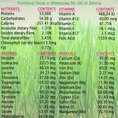 Nutritional Values in Wheatgrass Juice