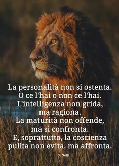 Sei una donna senza palle. Una vera delusione Journey Quotes, Life Quotes, Verona, Together Quotes, Sayings And Phrases, Italian Quotes, Quotes About Everything, I Love My Son, Love Your Life