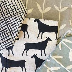 SnapWidget | Love it when new skinny la minx stock arrives! Cushions, soft buckets, stash bags, tea towels all in store today!! @skinnylaminx #therubyorchard
