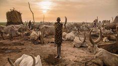 TOUS LES MATINS DU MONDE.Comme beaucoup des siens, cette jeune fille de l'ethnie dinka, un groupe qui représente environ 36% de la population du Soudan du Sud, soit environ 4millions de personnes, vit encore au rythme immuable du monde pastoral. Levée aux aurores avec son frère, elle veille sur le bétail de son clan, cuisine pour sa famille et s'occupe des tâches ménagères du camp itinérant. Une tâche particulièrement difficile pendant la saison sèche, où la course à l'eau impose aux…
