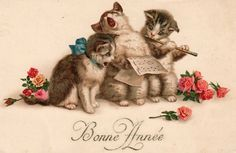 "French ""Happy New Year"" postcard - musical cats"