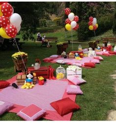 Cute idea for a birthday picnic