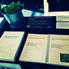 """""""Il grande libro delle insalate"""" alla Fabbrica del Vapore #fuorisalone2015 Un libro giardino per ricreare il tuo orto casalingo e divertirti con la storia di 12 insalate, la carta semi per farle germogliare, 12 ricette da provare e 12 consigli tutti da seguire ! #seMInAMI vieni a scoprirlo su #www.hobbyandpapers.com #unmondodedicatoallacarta #seedpaper #cartaconsemi #hobbyandpapers"""