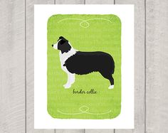 Border Collie Breed Custom Dog Art Print by HappyTailPrints