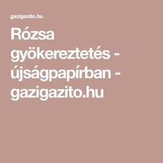 Rózsa gyökereztetés - újságpapírban - gazigazito.hu Gardening, Lawn And Garden, Horticulture