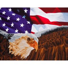 Needleart World Diamond Dotz Diamond Embroidery Facet Art Kit - Bald Eagle and Flag Needlework Shops, Thing 1, Art Deco Diamond, Embroidery Kits, Bald Eagle, American Flag, Cross Stitch Patterns, Printing On Fabric, Embroidery