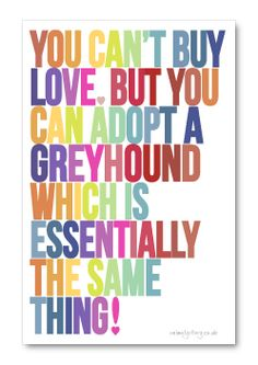 Never a truer word was spoken...this goes for all dogs...not just greys...❤️