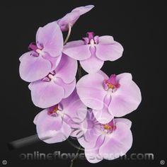 wholesale flowers atlanta farmers market