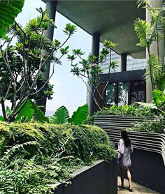 #ECOHOTELS #SWD #GREEN2STAY PARKROYAL on Pickering Hotel, Singapore   This is no walk in the park. Escape the hustle and bustle of city life by taking a short stroll (300m) along our garden walk that's high above street level. :@dukeandlee #parkroyalpickering - http://www.green2stay.com/asia-pacific-eco-hotels