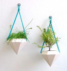 9 Idées pour créer une suspension de plantes simples et originelles !