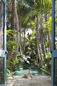 Mirabellicious ♥: Palm Beach for Starters. 'Palm Beach Chic' by Jennifer Ash Rudick, photography by Jessica Klewicki Glynn, via The Palm Beacher. Tropical Pool Landscaping, Tropical Backyard, Backyard Pool Designs, Swimming Pools Backyard, Tropical Houses, Garden Landscaping, Outside Pool, Pool Landscape Design, Small Pool Design