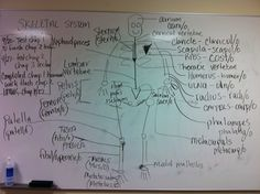 Medical term homework helpp!?